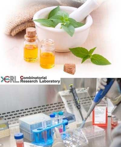 Novel Polyherbal Formulation with Rapid Skin Repair Potential