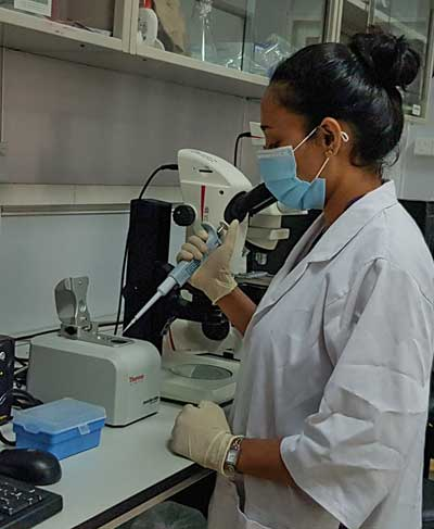 Tropical Medicine Research Center (TMRC) Project – Support Staff